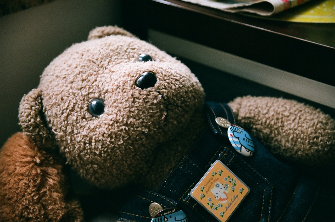 photo credit: Toy Bear by the Window via photopin (license)